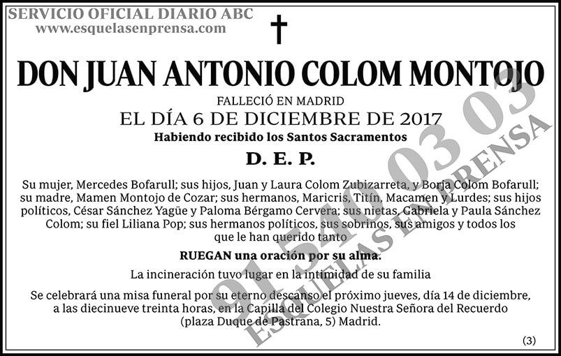 Juan Antonio Colom Montojo
